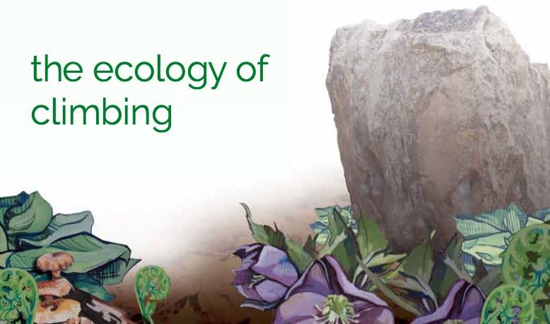Ecology of rock climbing