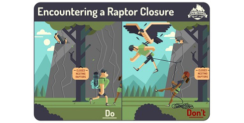 Encountering a Raptor Closure