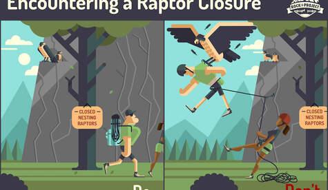 Encountering-a-Raptor-Closure web